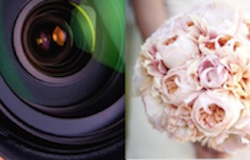 Runaway To San Diego - A service of Elope to San Diego™ | (619) 66-ELOPE | (619) 663-5673